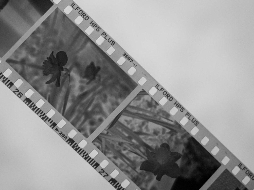 Warum fotografierst du eigentlich noch analog auf film digital